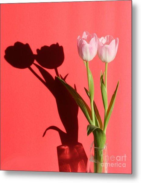 Tulips Casting Shadows Metal Print