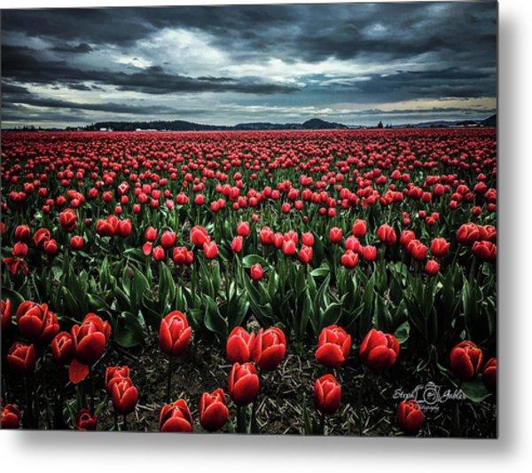 Tulips Forever Metal Print