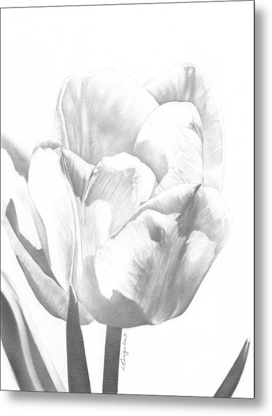 Tulips No. 1 Metal Print