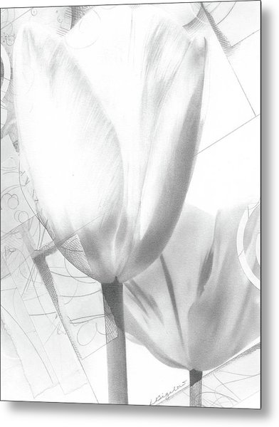 Tulips No. 3 Metal Print