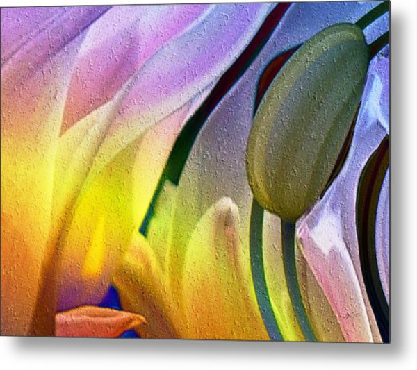 Tulips Secret Metal Print
