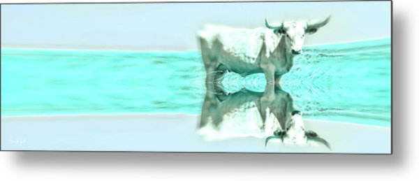 Turquoise And Steer Metal Print