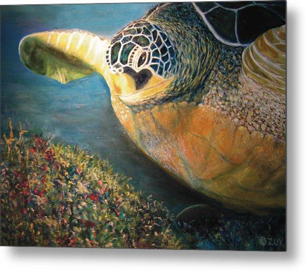 Turtle Run Metal Print