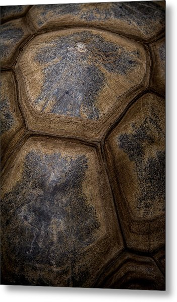 Turtle Shell Metal Print