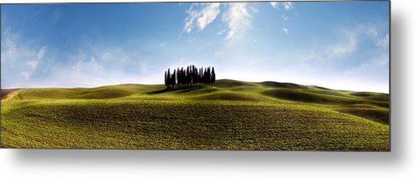 Tuscan Cypress Tree Metal Print
