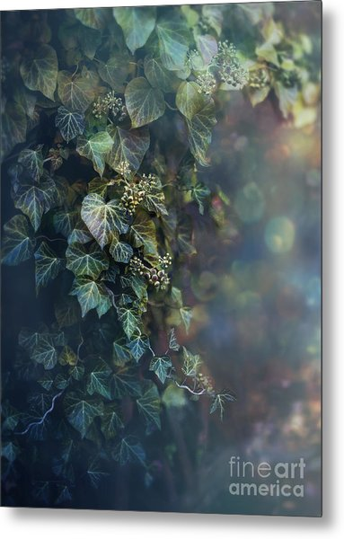 Twilight And Shadow Metal Print