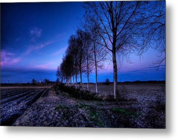 Twilight And Trees Metal Print