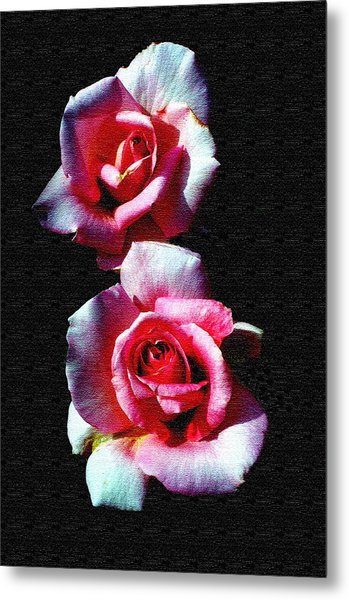 Twin Roses Metal Print by Ralph  Perdomo