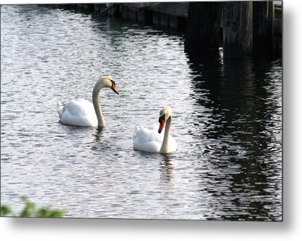 Twins Metal Print by Gerald Mitchell