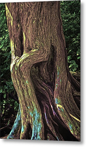 Twisted Arbutus Tree Metal Print