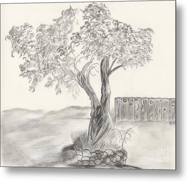 Twisted Trees Metal Print