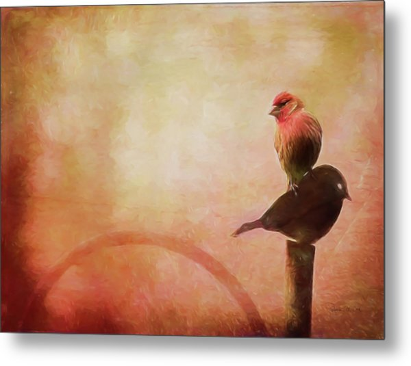 Two Birds In The Mist Metal Print