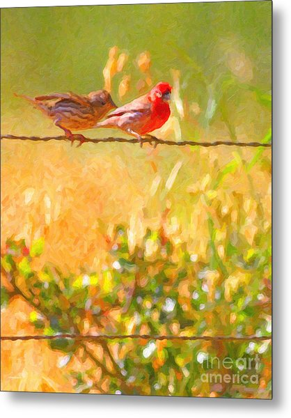 Two Birds On A Wire Metal Print
