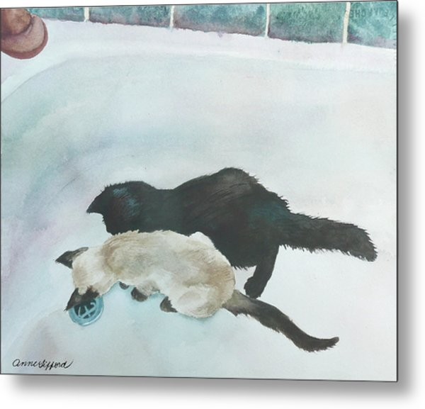 Two Cats In A Tub Metal Print