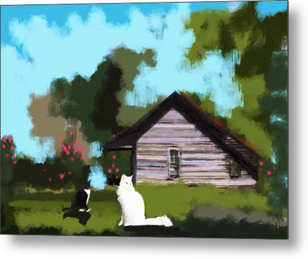 Two Cats In The Yard Metal Print by Jennifer Buerkle
