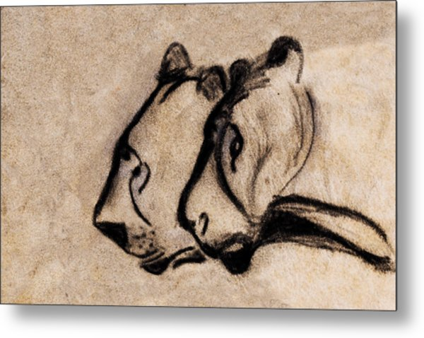 Two Chauvet Cave Lions - Clear Version Metal Print