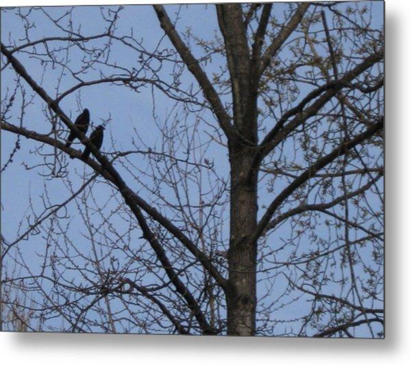 Two Crows Metal Print