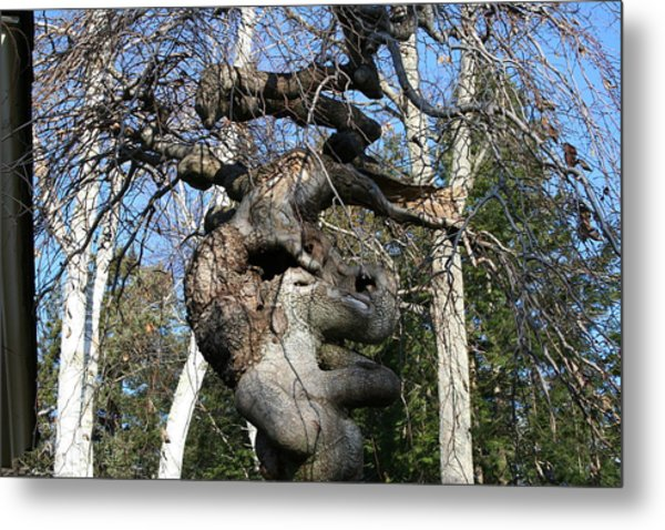 Two Elephants In A Tree Metal Print