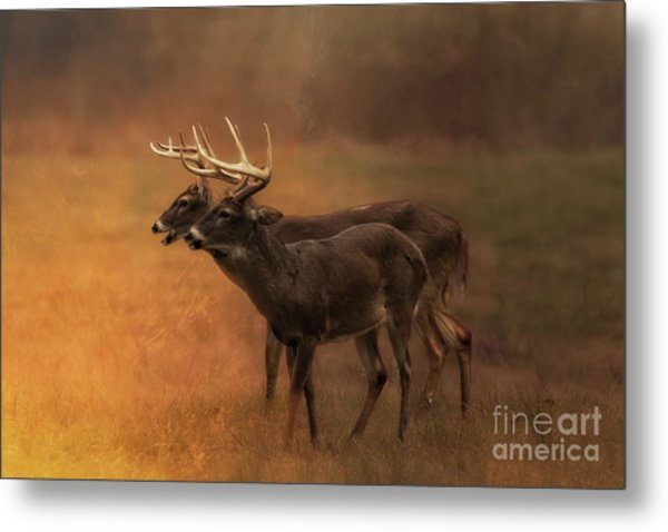 Two For One Metal Print