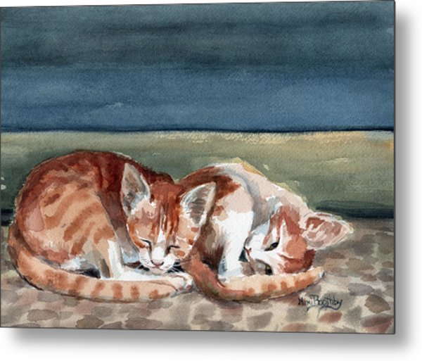 Two Kittens Metal Print