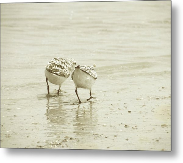 Two Of A Kind Metal Print by JAMART Photography