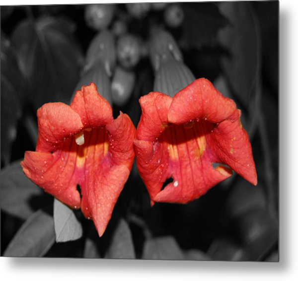 Two Of Hearts Metal Print