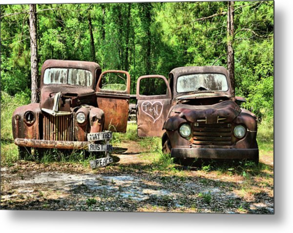 Two Old Dogs Metal Print