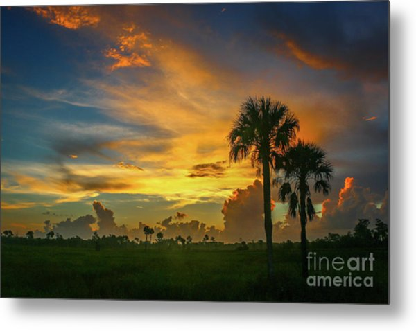 Metal Print featuring the photograph Two Palm Silhouette Sunrise by Tom Claud
