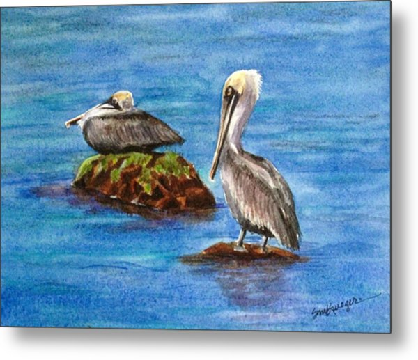 Two Pelicans Metal Print by Suzanne Krueger