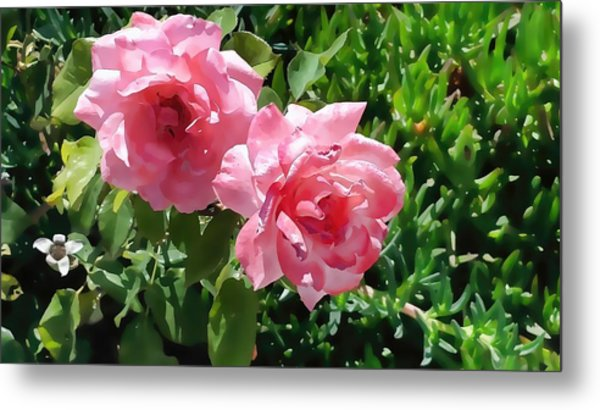 Two Pink Roses Version 1 Metal Print