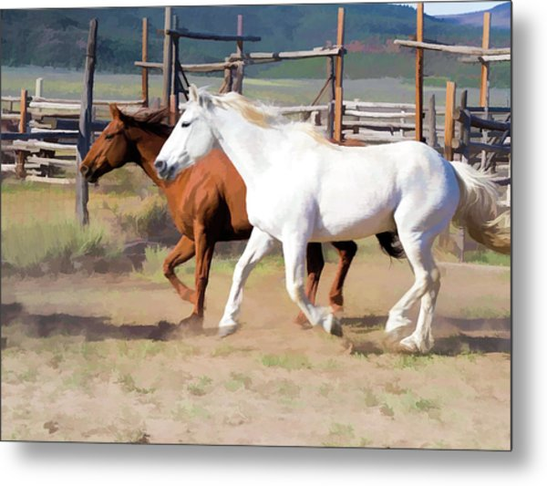 Metal Print featuring the digital art Two Ranch Horses Galloping Into The Corrals by Nadja Rider