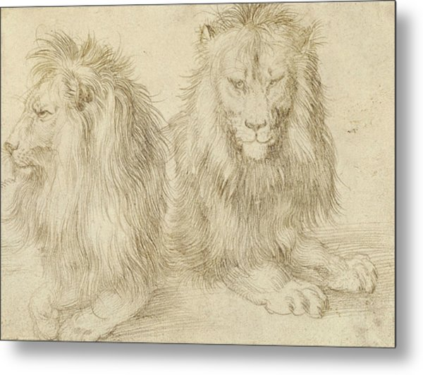 Two Seated Lions Metal Print