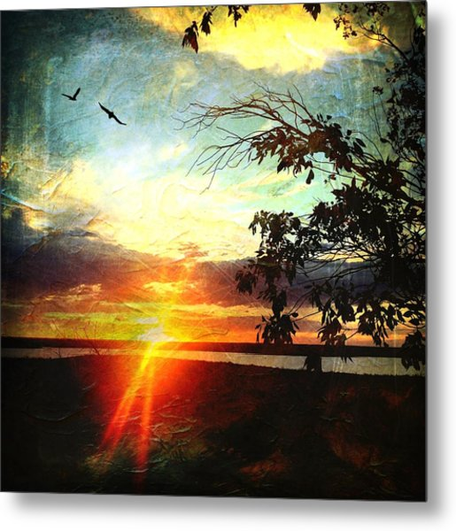 Two Souls Flying Off Into The Sunset  Metal Print