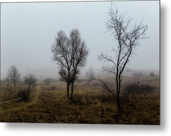 Two Trees In The Fog Metal Print
