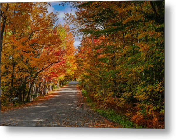 Typical Vermont Dirve - Fall Foliage Metal Print