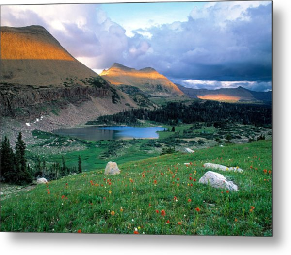 Uinta Wilderness Metal Print by Leland D Howard