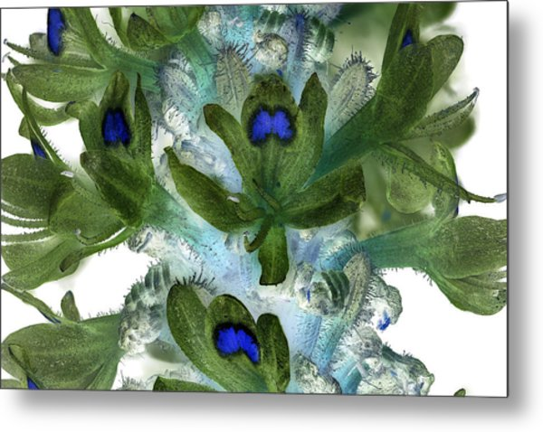Ultraviolet Wildflower 5 Metal Print