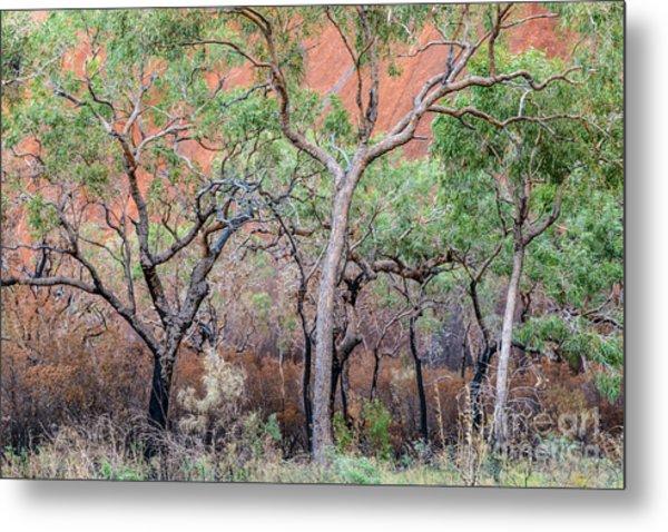Uluru 05 Metal Print