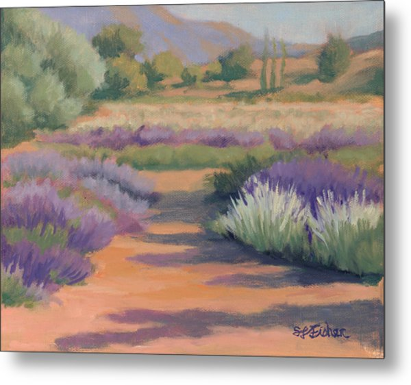 Under A Summer Sun In Lavender Fields Metal Print