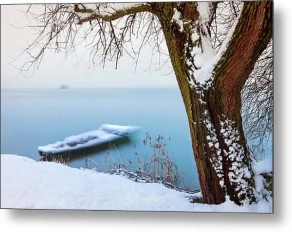 Under The Branch Metal Print