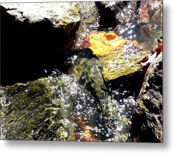 Under The Glass Of Water Metal Print