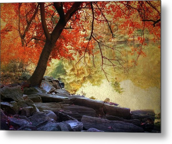 Metal Print featuring the photograph Under The Maple by Jessica Jenney
