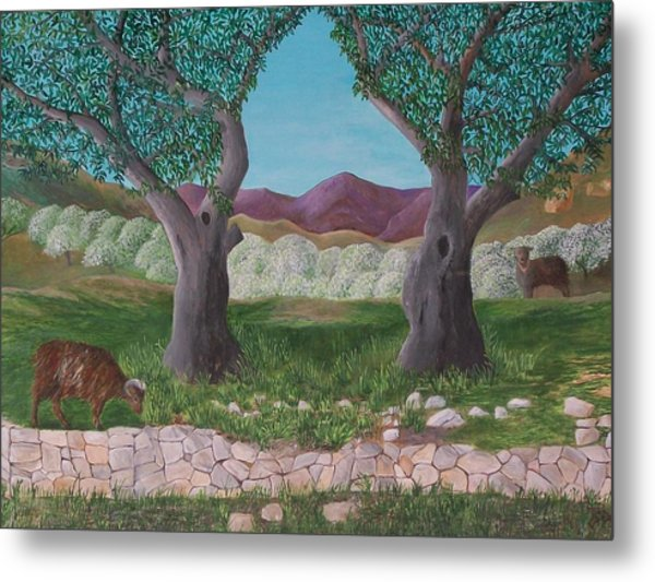 Under The Olive Trees Metal Print