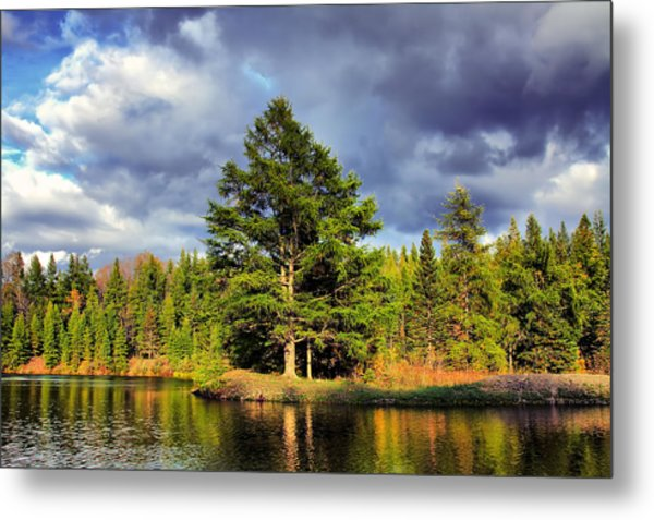 Under The Shade Tree Metal Print by Gary Smith