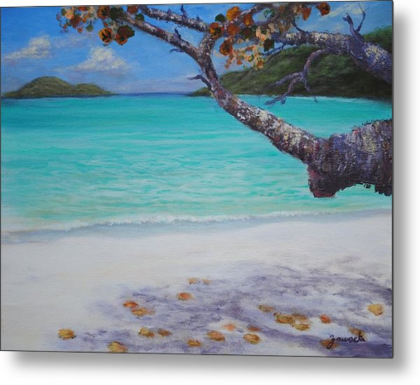 Under The Tree At Magen's Bay Metal Print