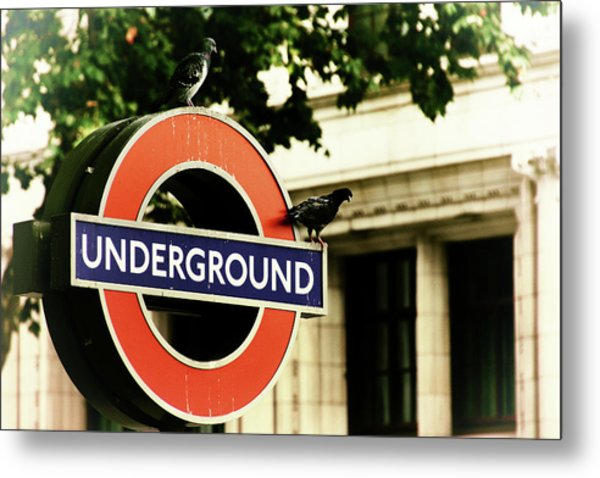 Metal Print featuring the photograph Underground by Rasma Bertz