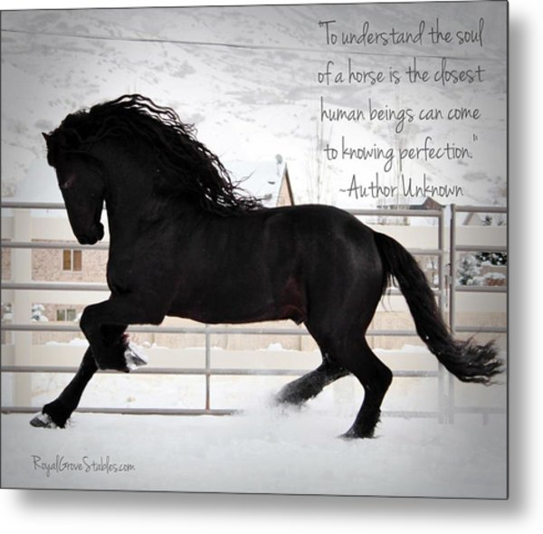 Understand The Soul Of A Horse Metal Print