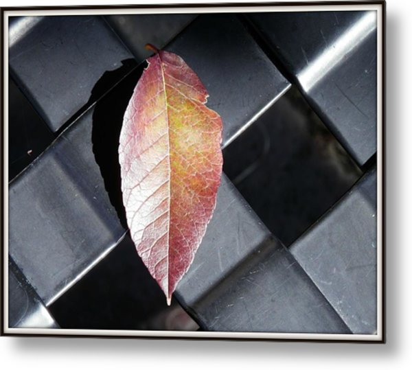Understated Elegance Metal Print