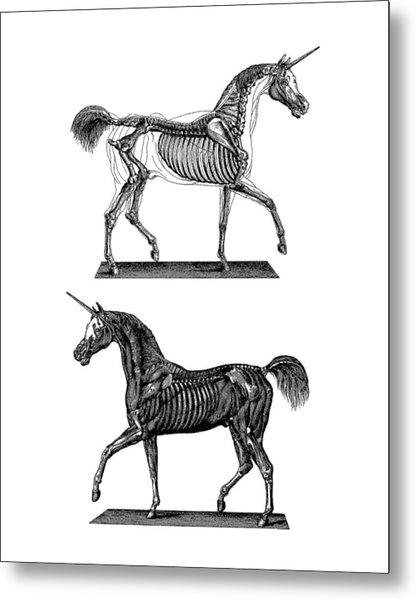 Unicorn Anatomy Metal Print