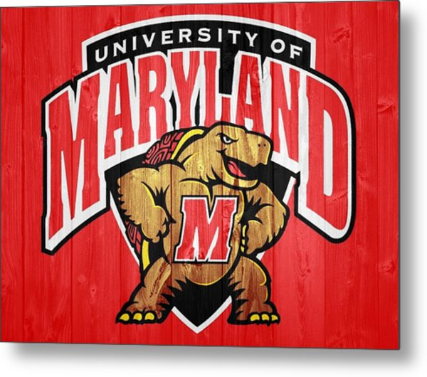 University Of Maryland Barn Door Metal Print